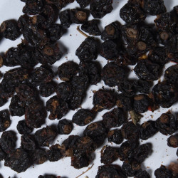 Owoc Przeczki Czarnej
